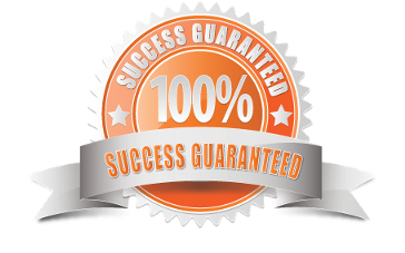 Online Website Success Guarantee