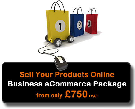 eCommerce Website Package for Business